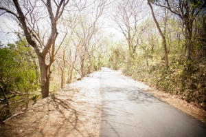 Pathway to Perasi White Sand beach
