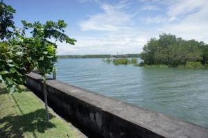 Pulau Penyu